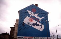 SHARK_00